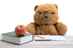 Teddy Bear in school Stock Images