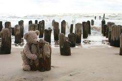 Teddy Bear by sea Stock Image