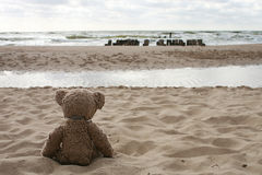 Teddy Bear by sea Stock Photos