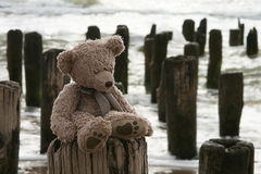 Teddy Bear by sea Royalty Free Stock Image