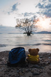 Teddy bear with sea in twilight blur background Royalty Free Stock Photos