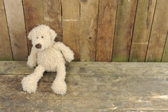 Teddy Bear Seated Against A Wooden Wall Stock Photo