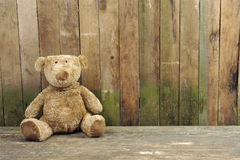 Teddy bear seated against a wooden wall Stock Images