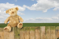 Teddy bear seated on an old wooden fence outdoors Stock Photo