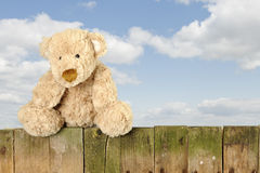 Teddy bear seated on an old wooden fence outdoors Stock Photos