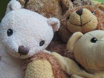 Teddy Bear Selfie 2 Fotos de archivo libres de regalías
