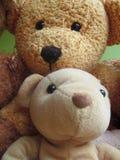 Teddy Bear Selfie 3 Foto de archivo libre de regalías