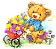 Teddy bear sells seeds of garden flowers. watercolor Stock Image