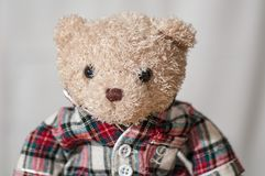 A teddy bear with a shirt stock photos