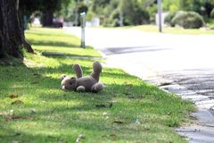 Teddy bear on side of  road Royalty Free Stock Photo