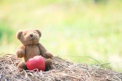 Teddy Bear Sit em um monte de feno com um coração vermelho colocado ao lado dele imagem de stock