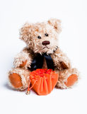 Teddy bear sitting. With bag Royalty Free Stock Photo