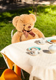 Teddy bear sitting behind table and drinking tea Stock Photography