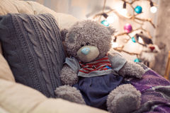 Teddy bear sitting on chair with gray pillow. Christmas tree at the background Royalty Free Stock Image