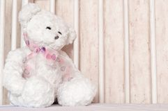 Teddy bear sitting in the cot Stock Photos