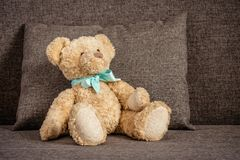 Teddy bear sitting on the couch next to a sofa cushion.  stock photo
