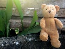 Teddy bear sitting enjoy on brick. royalty free stock photo