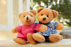 Teddy bear. Sitting in the garden Royalty Free Stock Image