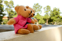 Teddy bear. Sitting in the garden Royalty Free Stock Photo