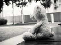 Teddy Bear Sitting on the garden looking out side. Black and white lonely Teddy Bear Sitting on the garden looking out side  Concept about love Stock Photos