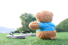 Teddy bear sitting on the grass . Concept about love and waiting. For someone Stock Photography
