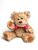 Teddy bear sitting. Isolated Stock Images