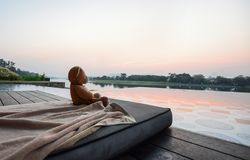 Teddy bear sitting look through the river on sunrise royalty free stock image