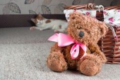 Teddy Bear sitting near wicker basket Royalty Free Stock Images