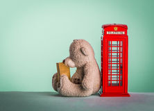 Teddy bear sitting in the red telephone box Stock Photo