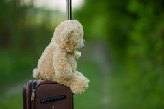 Teddy bear sitting on a suitcase Royalty Free Stock Photos