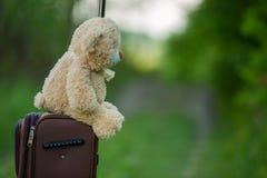 Teddy bear sitting on a suitcase Stock Photo