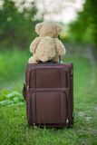 Teddy bear sitting on a suitcase Royalty Free Stock Images