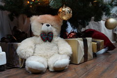 Teddy bear. Sitting under Christmas Tree Royalty Free Stock Photography