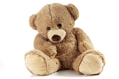 Teddy bear sitting on white background Royalty Free Stock Photos