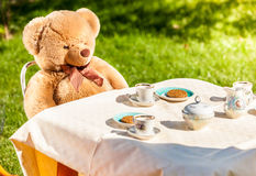 Teddy bear sitting at yard and having english breakfast Stock Image