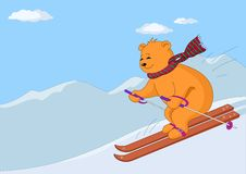 Teddy-bear skies in mountains day. Teddy-bear slides on skis from hill against a mountain landscape Royalty Free Stock Photo