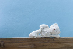 Teddy bear sleep ,on old wood  and blue wall background. Stock Photography