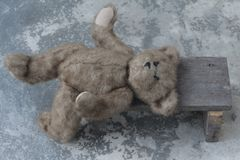 Cute teddy bear sleep on seat wood Royalty Free Stock Image