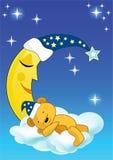 The teddy bear sleeps.