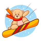 Teddy bear snowboarding Royalty Free Stock Image