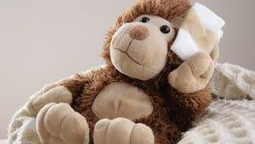 Teddy Bear-Spielzeug verwundet im Kopf Unfall, Gesundheitswesen stock video footage