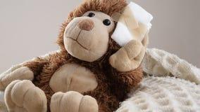 Teddy Bear-Spielzeug verwundet im Kopf Unfall, Gesundheitswesen stock footage