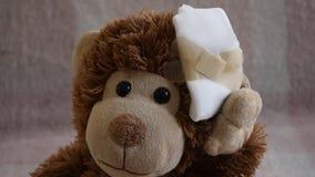 Teddy Bear-Spielzeug verwundet im Kopf Unfall, Gesundheitswesen stock video