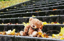 Teddy bear on the stairs Stock Photography