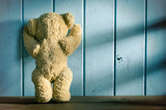 Teddy bear stands in front of a blue wall Stock Photos