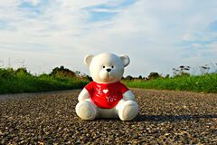Teddy bear on stone road Royalty Free Stock Photos
