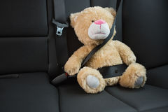 Teddy bear strapped in with seat belt. In back seat of car Stock Photography