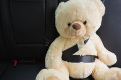 Teddy bear strapped in with seat belt. In back seat of car Royalty Free Stock Photo