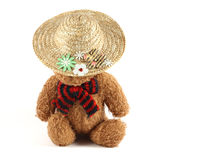 Teddy bear with a straw hat Stock Photos