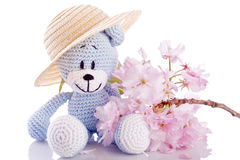 Teddy bear stuffed animal with pink blossom Stock Photo